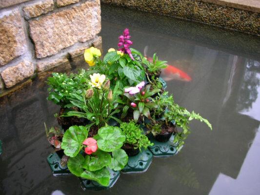 Floating Pond Planter