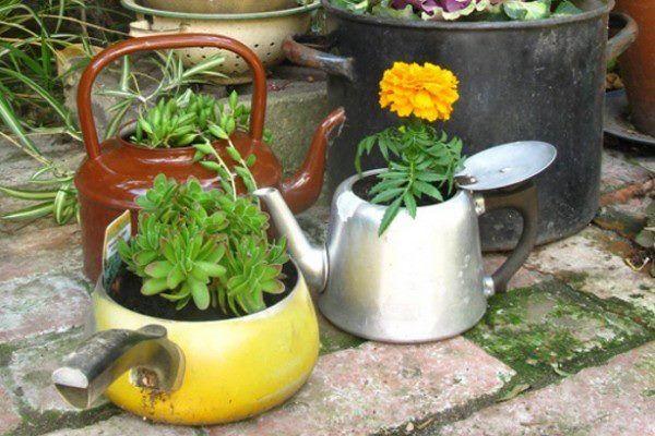 Old Kettle Flower Pot