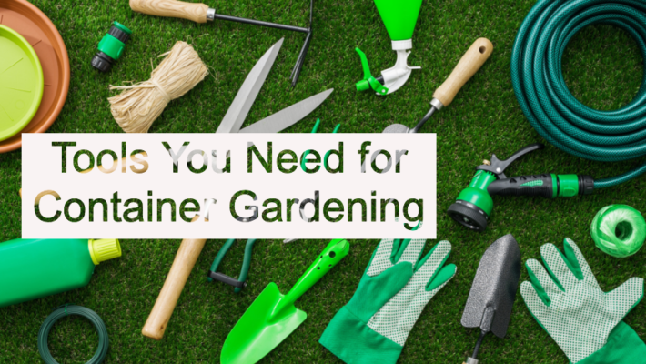 Tools You Need for Container Gardening